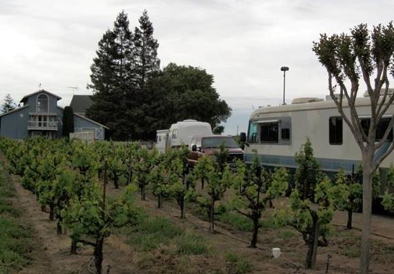 Winecamping