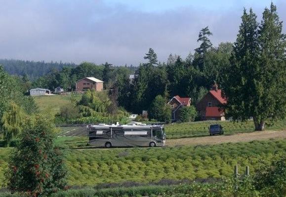 Winecamping2